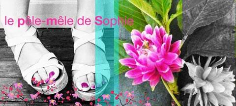 montage photos - portrait Sophie Plouvier
