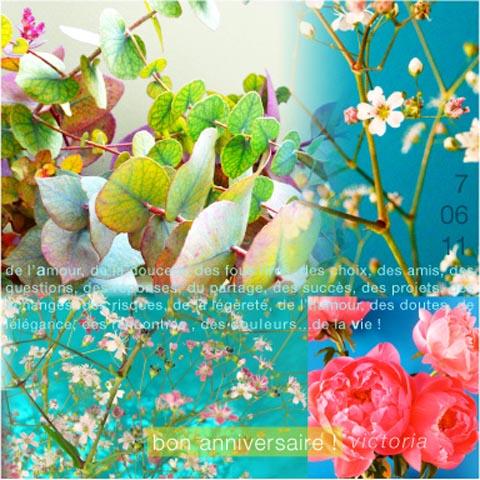carte fleurs Sophie Plouvier