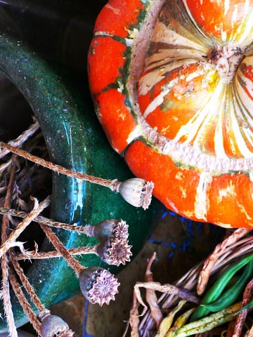l'automne, mon fil rouge…