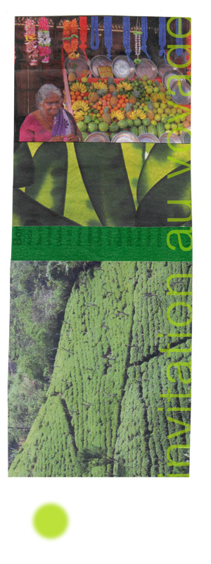 montage collage sophie plouvier