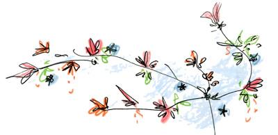 dessin crayon de couleur branche