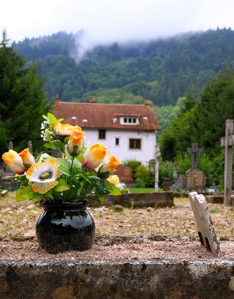 des fleurs artificielles dans les Vosges