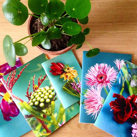 cahiers-printemps Sophie Plouvier