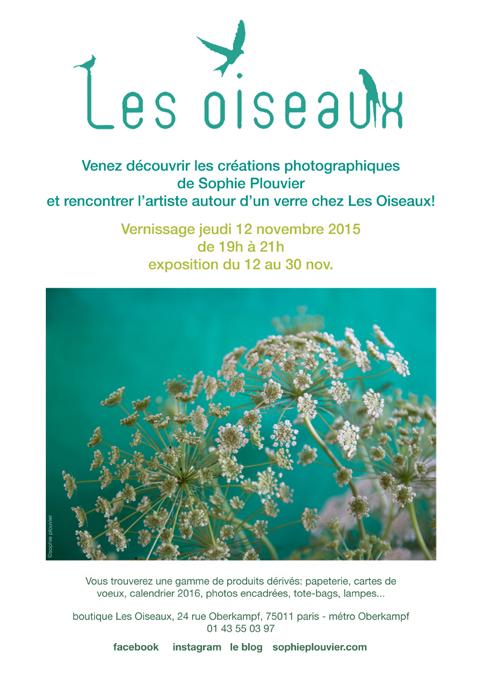 vernissage-lesOiseaux-SophiePlouvier