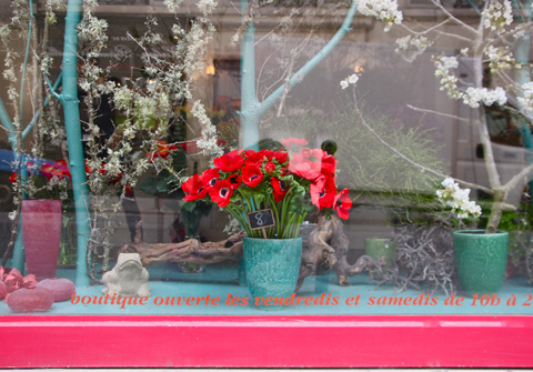 Fleuriste Marion Audier - Photo Sophie Plouvier