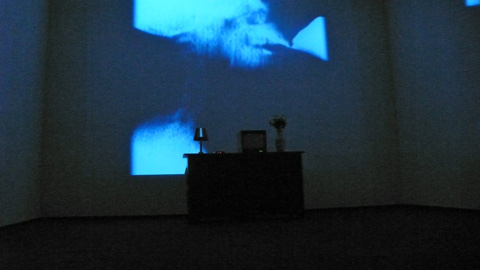 """the spleep of reason"" exposition Bill Viola grand Palais"