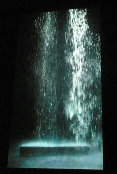 """Tristan's ascension"" exposition Bill Viola grand Palais"