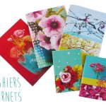 cahiers carnets Sophie Plouvier