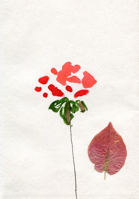 dessin Sophie Plouvier