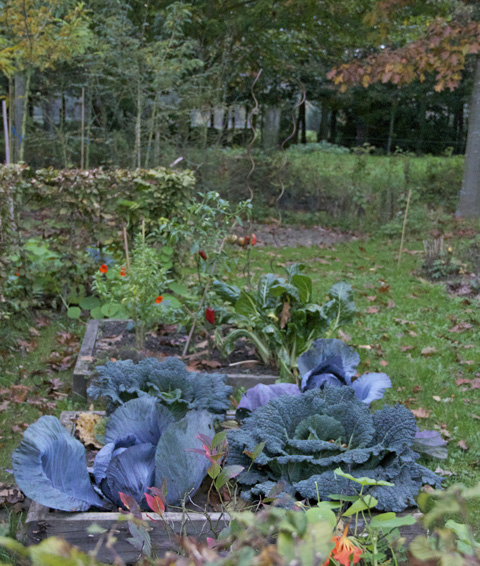 jardin paysagé par Frédéric Delesalles à Marchiennes