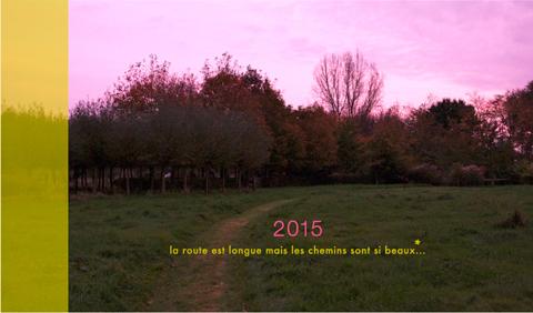 carte voeux 2015 Sophie Plouvier