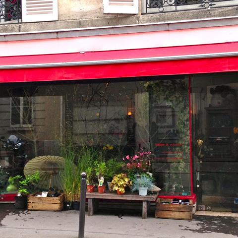 chez Marion Audier, fleuriste à Paris - photo Sophie Plouvier