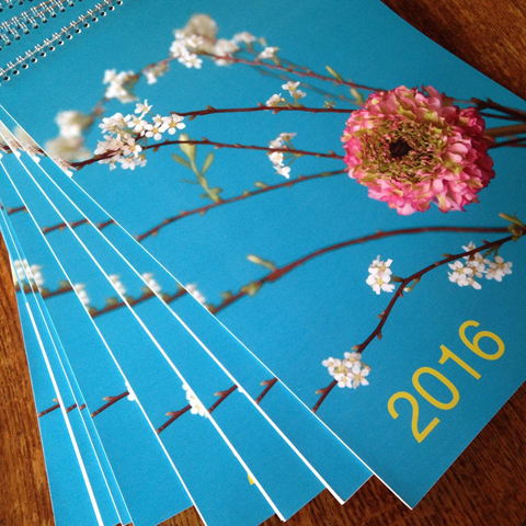 calendrier 2016 !
