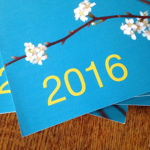calendrier 2016 Sophie Plouvier