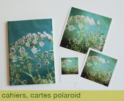 cahier-cartes-polaroid Sophie Plouvier