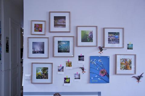 photos encadrées Sophie Plouvier