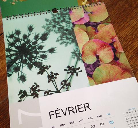 calendrier2017-sophie plouvier