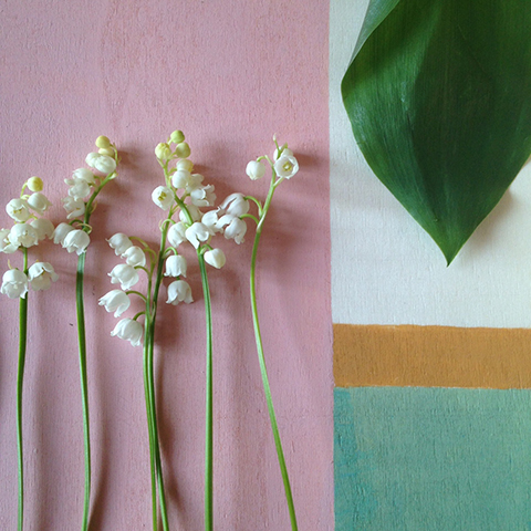 photo muguet Sophie Plouvier