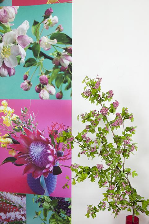 papier peint fleuri Sophie Plouvier