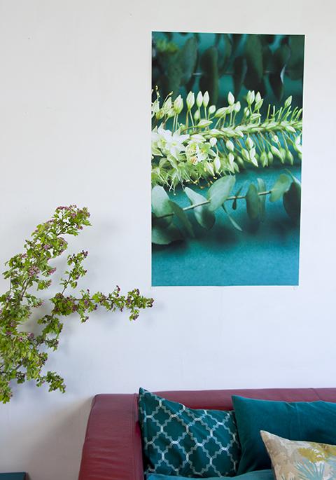 affiche fleurie Sophie Plouvier