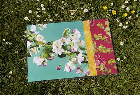"""set-de-table """"fleurs de pommier"""" Sophie Plouvier"""