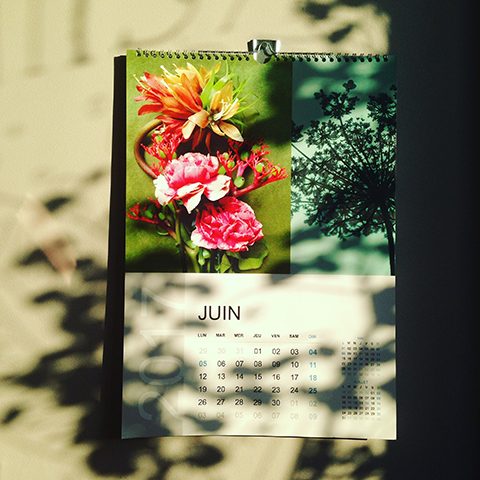calendrier et photo Sophie Plouvier