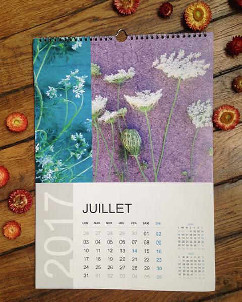 calendrier Sophie Plouvier