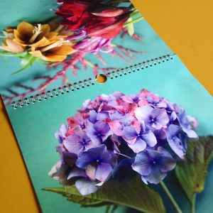 calendrier annuel floral Sophie Plouvier