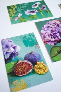 cartes postales vertes - Sophie Plouvier