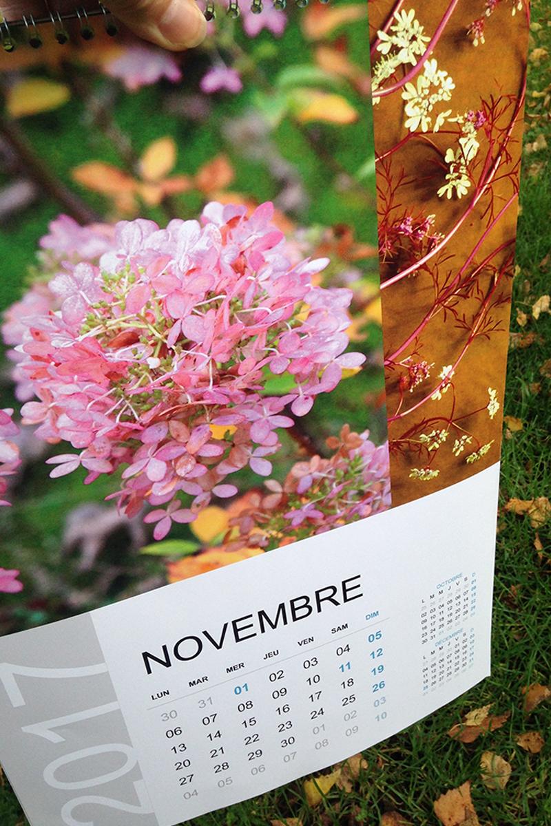 mois de novembre-calendrier Sophie Plouvier