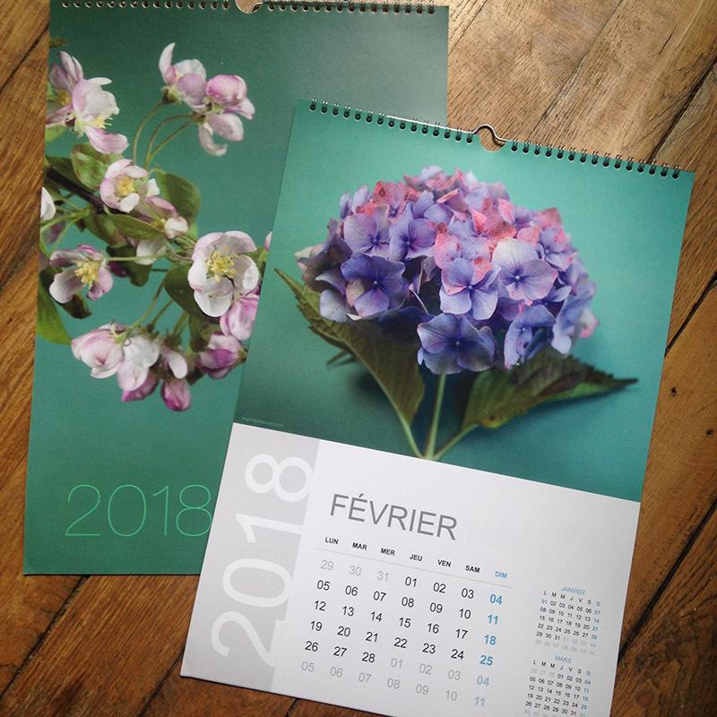 calendrier 2018 Sophie Plouvier