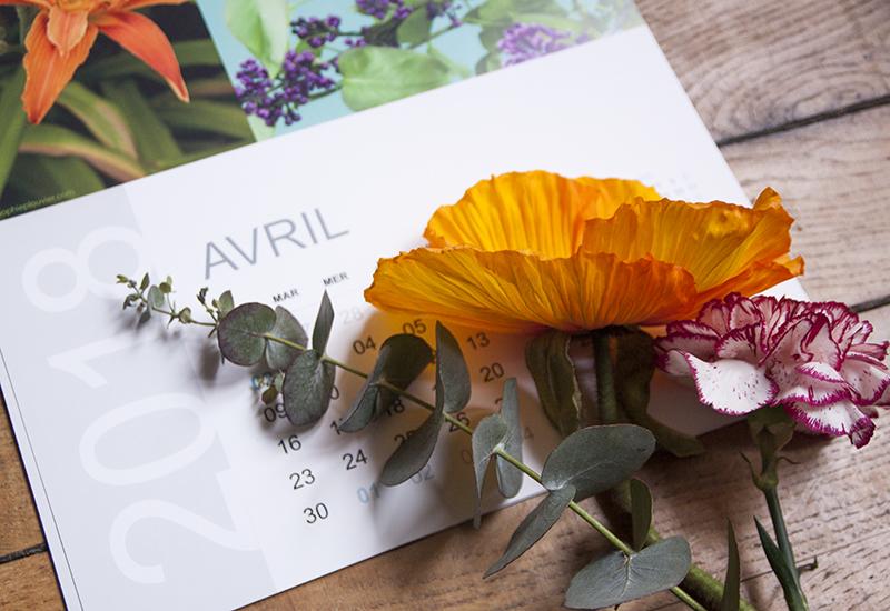 calendrier avril Sophie Plouvier