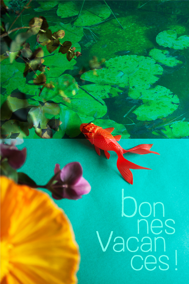 photo montage poisson rouge en vacances de Sophie Plouvier