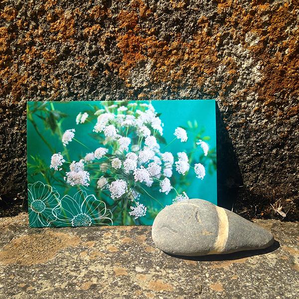 carte postale Sophie Plouvier