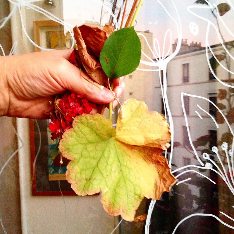 photo feuilles d'Automne Sophie Plouvier