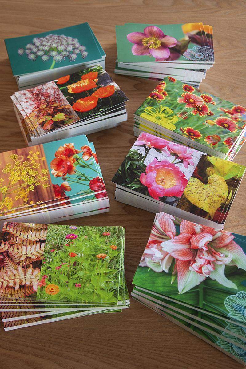 Nouvelles cartes postales !