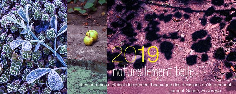 carte-de-voeux-2019-sophie-plouvier