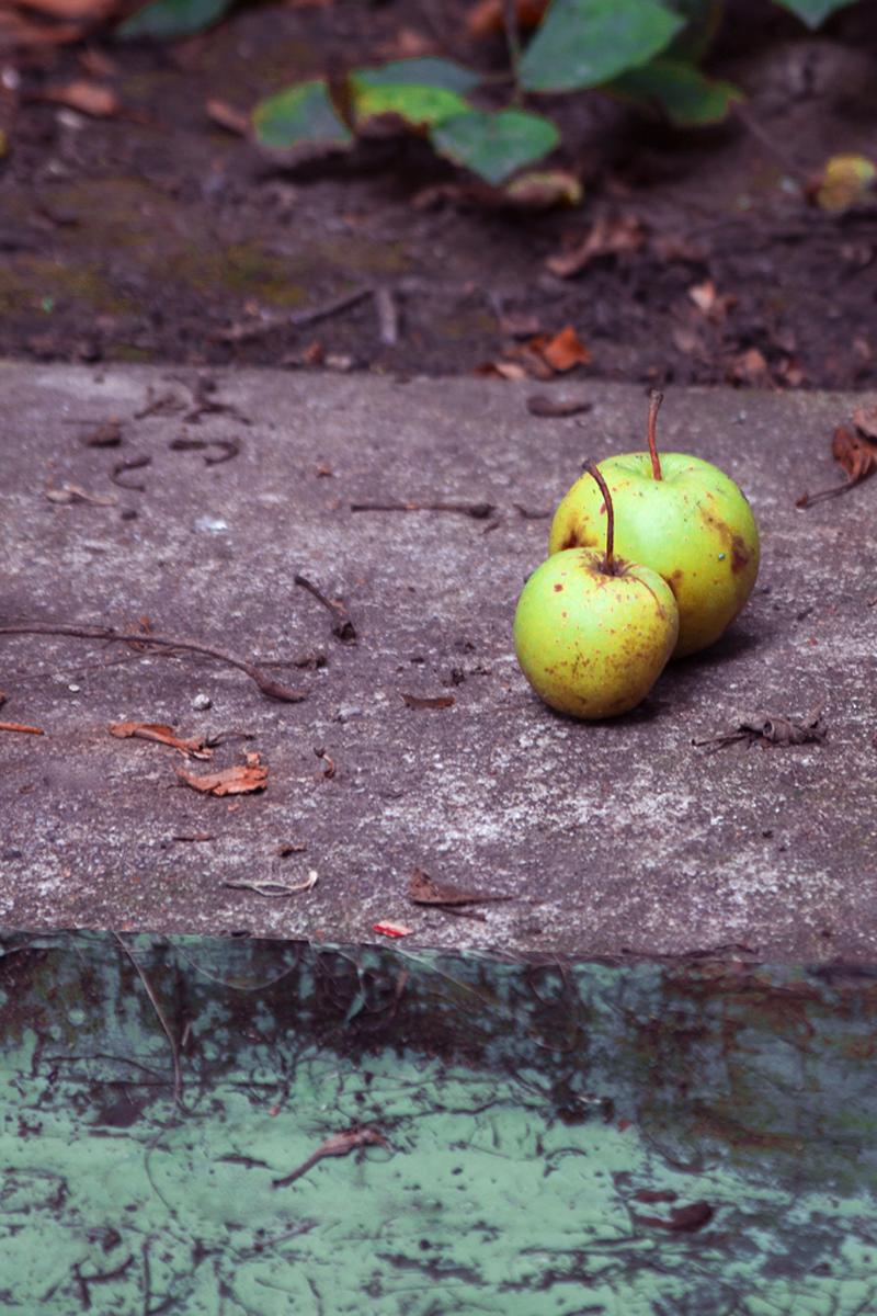 photos pommes au Pluralium - Sophie Plouvier