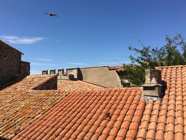 photo toits Arles - photo vacances Sophie Plouvier