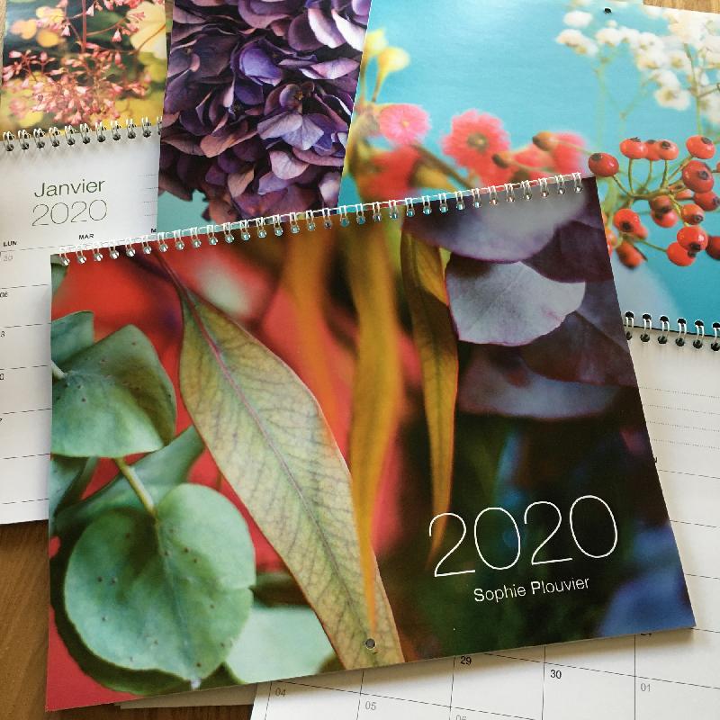 calendrier mural 2020 Sophie Plouvier