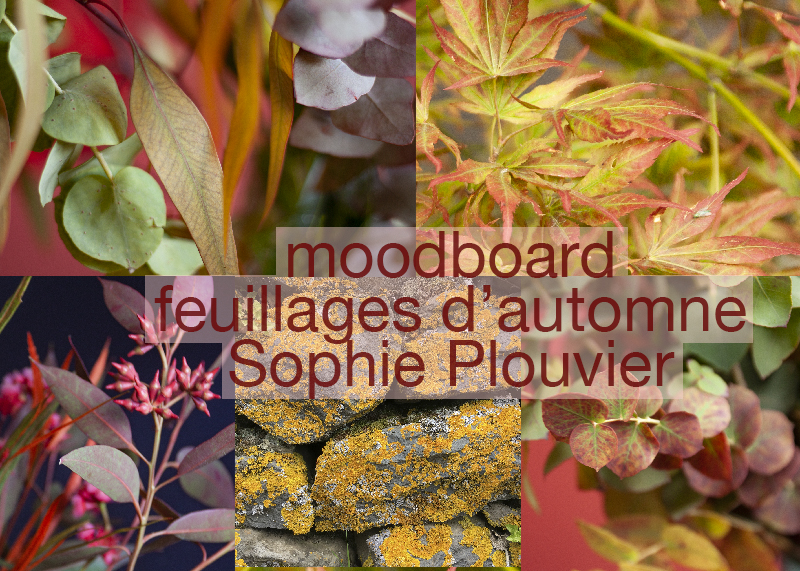 moodboard Automne Sophie Plouvier