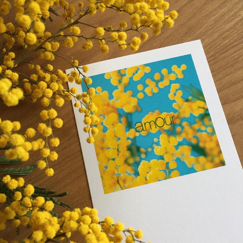 carte saint valentin Sophie Plouvier