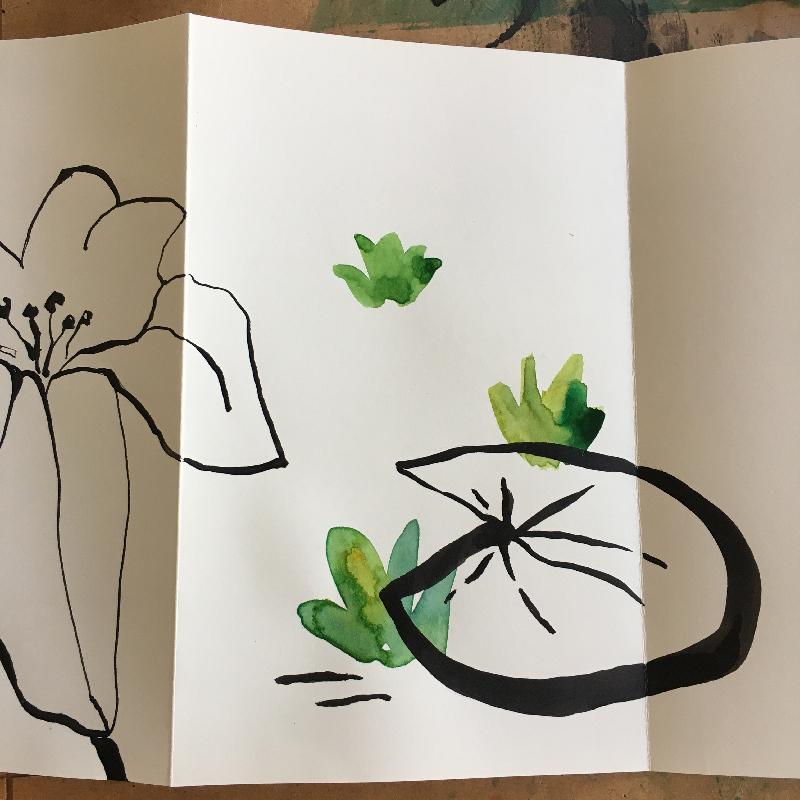 dessins auquarelle et encre de chine - Sophie Plouvier