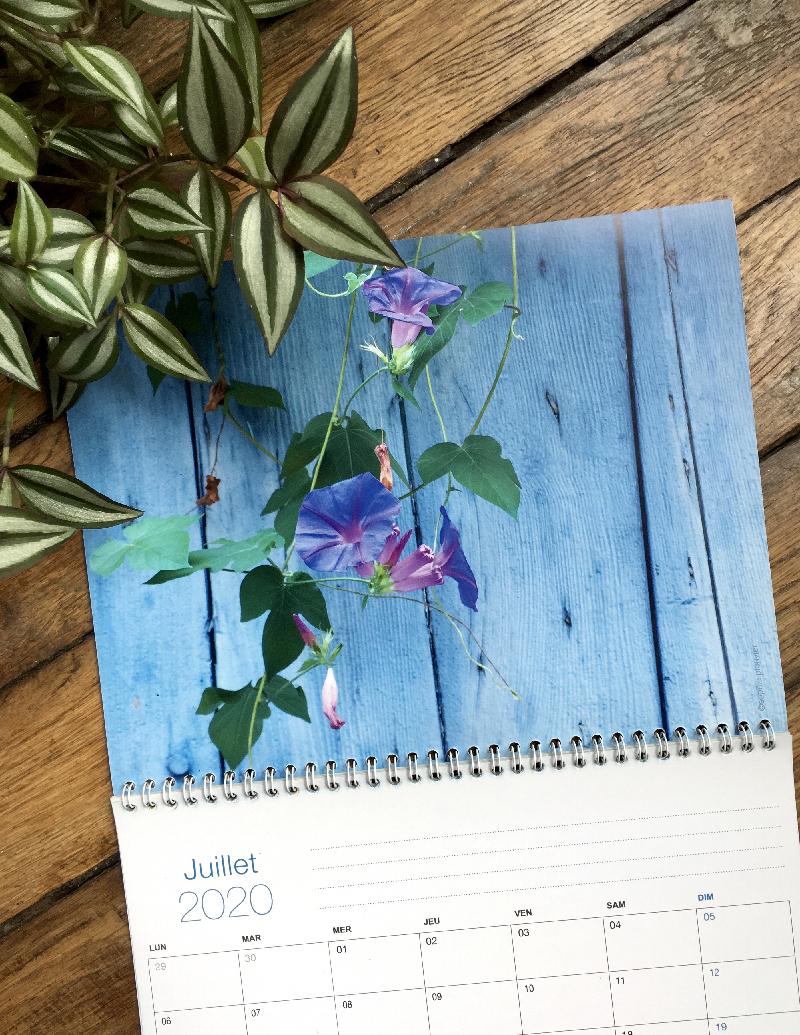 calendrier Photos Sophie Plouvier