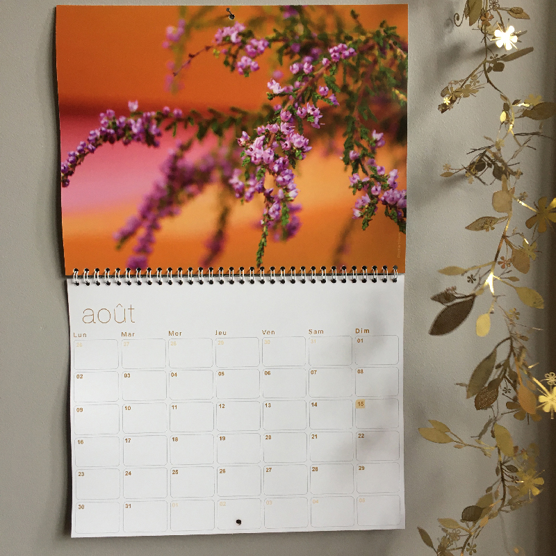 calendrier 2021 Sophie Plouvier