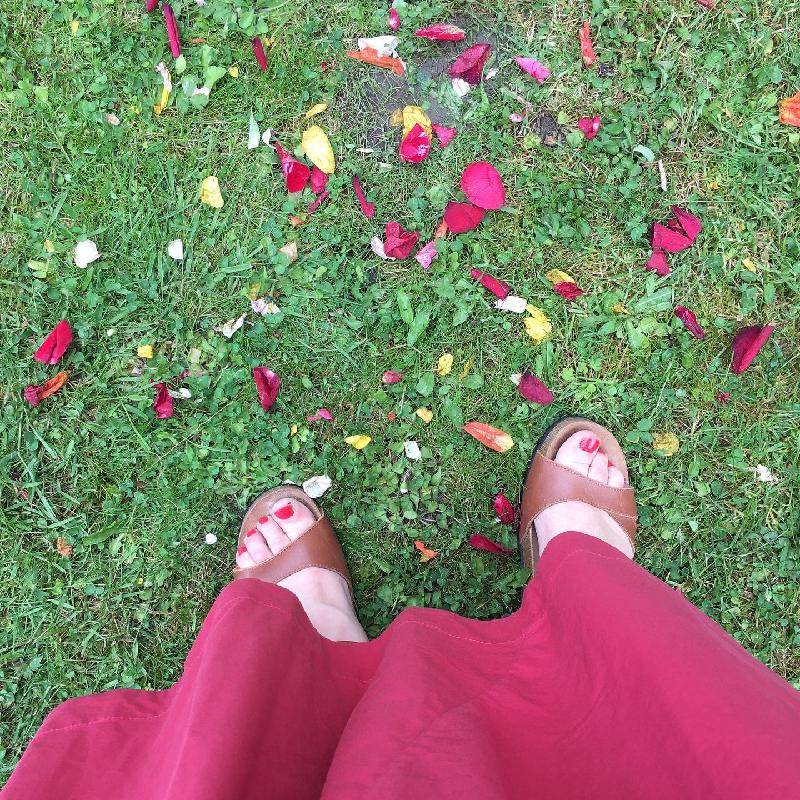 photo pétales de rose - mariage