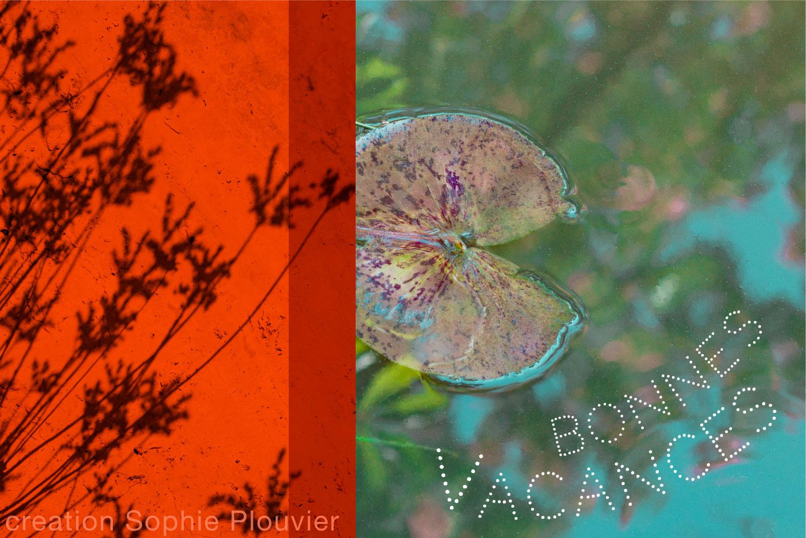 carte vacances sophie plouvier