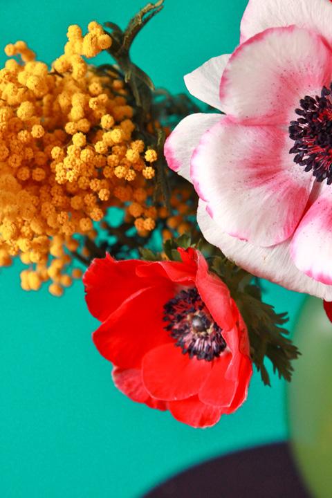 anémones et mimosa