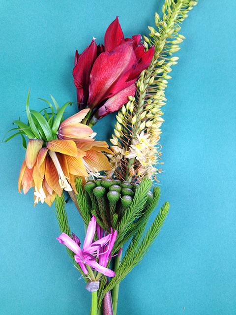 Bouquet du jour autour de l'amaryllis !
